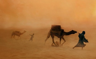 steve mcCurry camels in dust storm jaisalmer india 2010